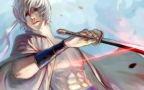 Wallpaper weapons, katana, anime, petals, art, guy, gintama, sakata gintoki, shiroyasha, shimo