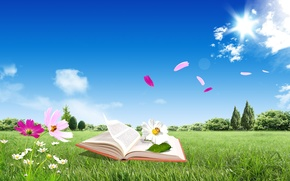 Picture the sky, leaves, flowers, book, owner, clouds blue
