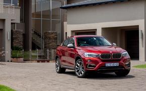 Picture garage, BMW, office, Sport, xDrive, F16, 2015, ZA-spec, BMW. yard