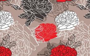 Wallpaper nature, flowers, peony, peony