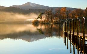 Picture autumn, water, trees, mountains, fog, lake, Seagull, Morning, the bridge