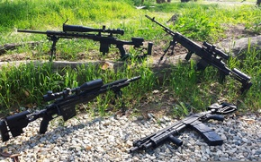 Picture weapons, M1A, Mossberg 500, Rem 700, Savage MKII