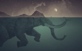 Wallpaper sea, elephant, ship, island, The moon