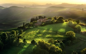 Picture trees, house, morning, Italy, Tuscany