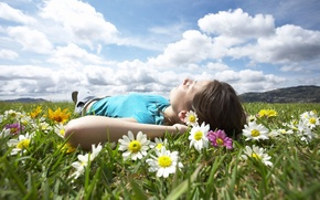Picture field, summer, girl, flowers
