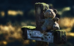 Wallpaper cross, toy, bear
