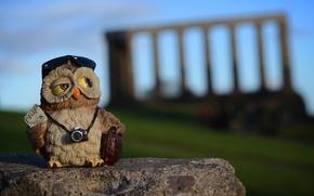 Picture owl, stone, toy, camera, Scotland, silhouette, Edinburgh, Calton Hill