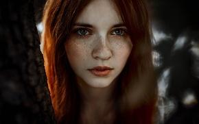 Picture freckles, sponge, the beauty, Anne Hoffmann