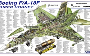 Picture drawing, Boeing, details, Super Hornet, F/A-18F