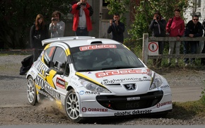 Picture Dust, Peugeot, Rally, 207