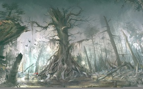 Picture forest, assassin, Assassin's Creed III, Connor Kenuey, Assassin's creed 3