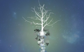 Picture tree, growth, installation, Tree, self-knowledge, get