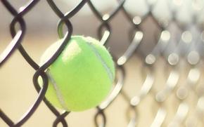 Picture ball, wallpaper, tennis, sport