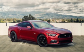 Picture mustang, red, ford, 5.0, 2015