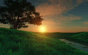 Wallpaper art, tree, river, field, meadow, grass, river, sunset