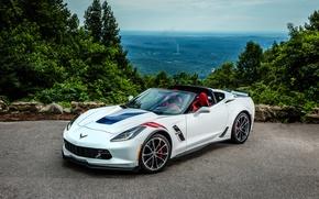 Picture coupe, Corvette, Chevrolet, Chevrolet, Coupe, Corvette, Stingray