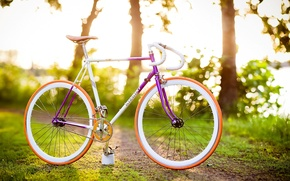 Picture greens, grass, leaves, trees, bike, background, Wallpaper, vegetation, mood, blur, wallpaper, bicycle, widescreen, background, leaves, …