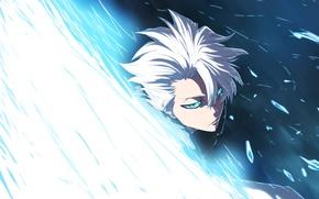 Picture anime, boy, Bleach, art, Shinigami, Toshiro Hitsugaya