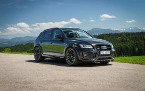 Picture Audi, Audi, crossover, ABBOT