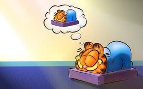 Picture cat, cartoon, sleep, sleeping, Garfield, Garfield