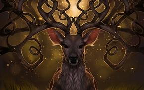 Picture grass, light, fireflies, deer, art, horns, rajewel