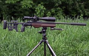 Wallpaper sniper, rifle, grass, TRG‑22, sight, forest, Sako