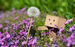 Wallpaper flowers, macro, plants, dandelion, danbo, pink, grass, spring