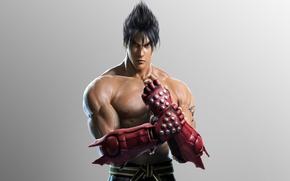 Picture look, gloves, fighter, muscle, tekken, Jin Kazama