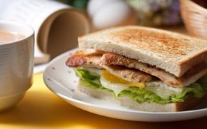 Picture egg, bread, meat, sandwich