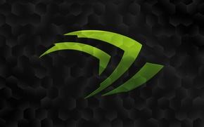 Picture Logo, nVidia, green, black
