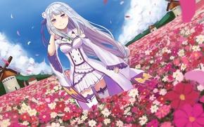 Picture girl, flowers, glade, mill, anime, art, Emilia, Re: Zero kara hajime chip isek or Seikatsu