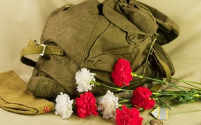 Wallpaper Flowers, medal, backpack, pussy, 730, was, holiday, boots!, happy, will.Who, All, days, the, February! Who, ...