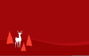 Picture trees, background, color, spruce, deer