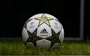 Picture field, grass, lawn, football, the ball, Champions League