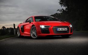 Picture Audi, V10, More, '2015, r8