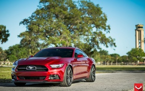 Picture Mustang, Ford, CVT, Anniversary, 50th, Gloss, Graphite, Pack, 20 Vossen