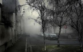 Picture trees, machine, Fog