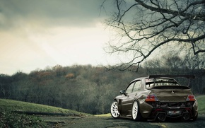 Picture forest, sport, tuning, Mitsubishi, lancer, evolution