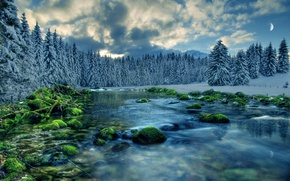 Picture forest, the sky, clouds, snow, trees, river, stones, the moon, tree, moss, spruce, stream