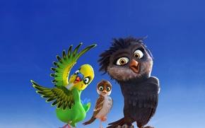 Picture kawaii, cinema, Olga, bird, wings, feathers, movie, Richard, film, owl, Kiki, sugoi, subarashii, sparrow, beak, …