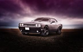Picture sea, car, Dodge, auto, grey, Dodge challenger