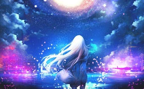 Picture the sky, girl, stars, hair, back, anime, petals, art
