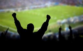 Picture wallpaper, sport, stadium, football, fans, emotions
