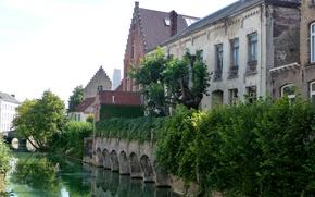 Wallpaper greens, trees, bridge, home, channel, Belgium, the bushes, Bruges