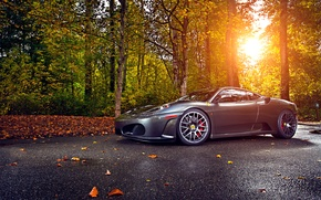 Picture Ferrari, Green, Sun, Autumn, Tuning, asphalt, Silver, 430, Wheels, Trees, Leaf