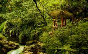 Picture trees, Park, river, China, China, gazebo, Sichuan, Emeishan National Park, Emeishan, Sichuan, Emeishan, National Park ...