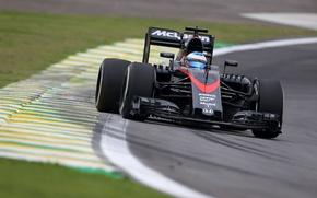Picture McLaren, Turn, Formula 1, Fernando Alonso, The curb