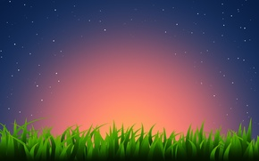 Picture grass, stars, sunset