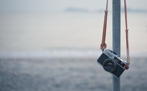 Picture background, camera, Olympus