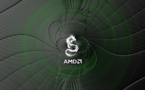 Picture computer, photo, logo, AMD